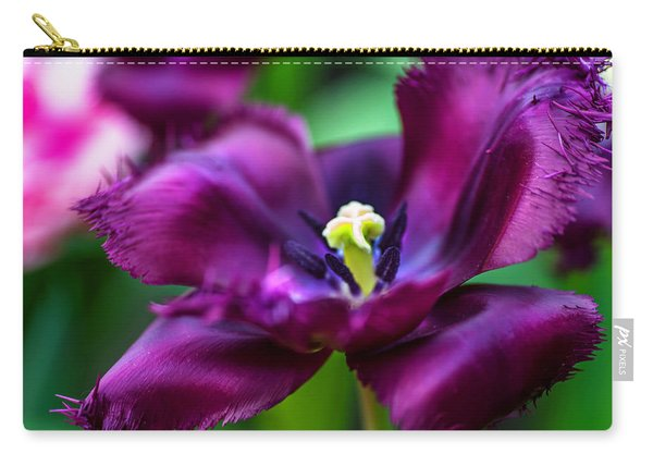 Dark Purple Parrot Tulip. The Tulips Of Holland Carry-all Pouch