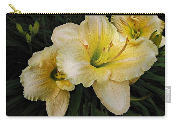 Day Lilies A Short Life Carry-all Pouch