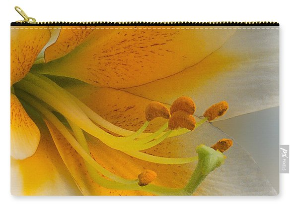 Gold Daylily Close-up Carry-all Pouch