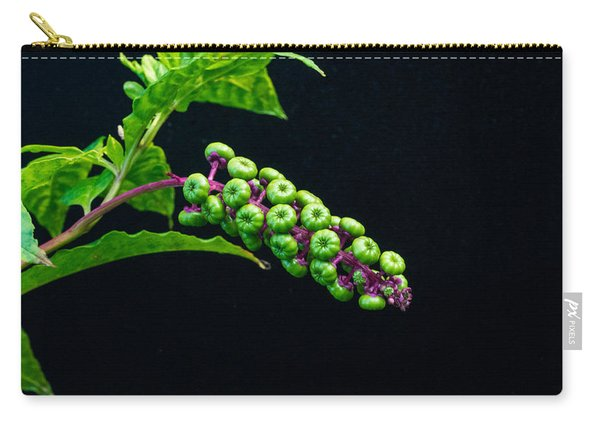 Developing Poke Berry Seeds Carry-all Pouch