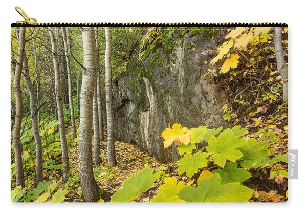 Carry-all Pouch featuring the photograph Devil's Club In Autumn by Tim Newton