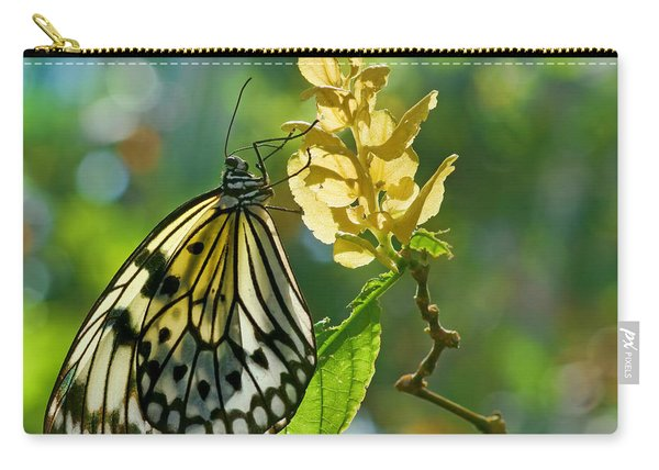 Diaphanous Carry-all Pouch