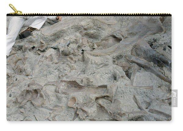 Dinosaur National Monument Park Carry-all Pouch