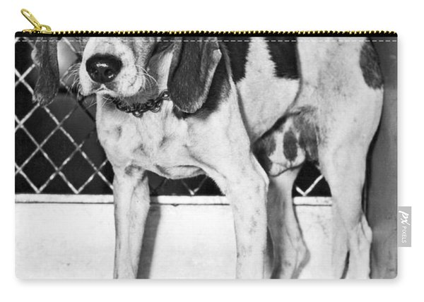 Dog Saved From Execution Carry-all Pouch