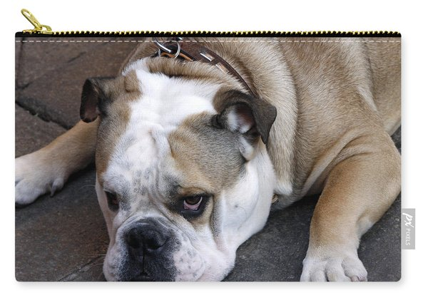 Dog. Tired. Carry-all Pouch