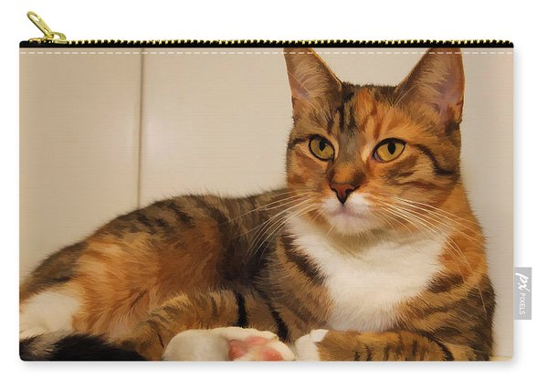 Double Tabby Carry-all Pouch