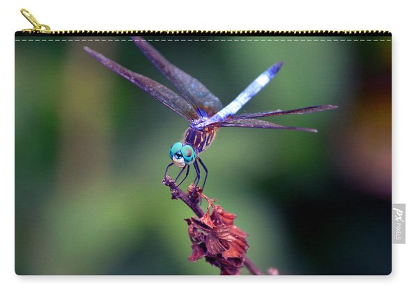 Dragonfly 2 Carry-all Pouch