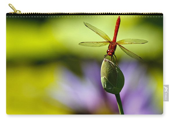 Dragonfly Display Carry-all Pouch