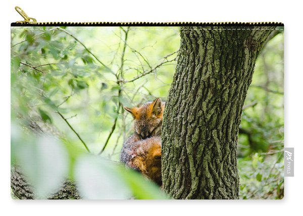Dreaming Above All Carry-all Pouch