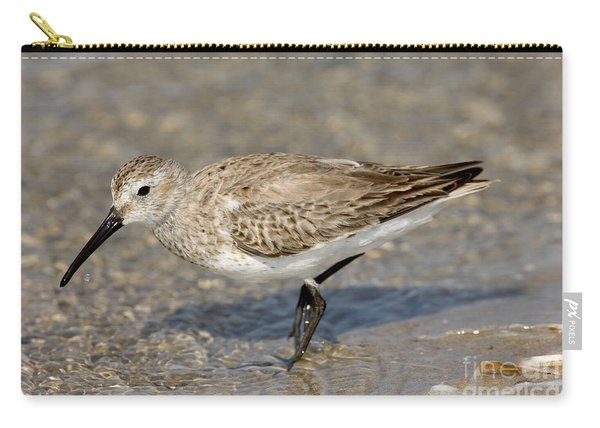 Dunlin Calidris Alpina In Winter Plumage Carry-all Pouch