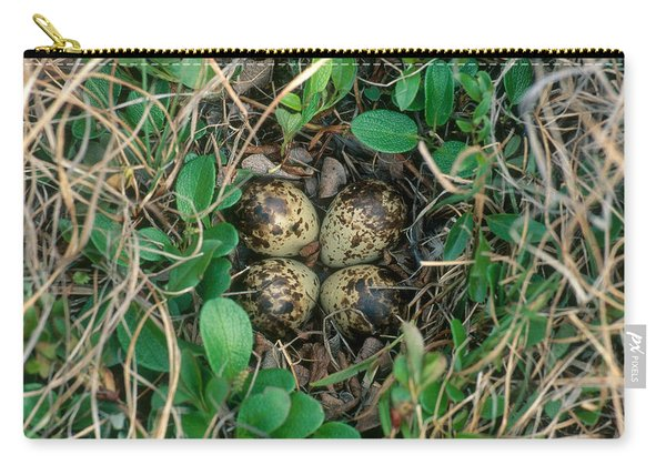 Dunlin Nest And Eggs Carry-all Pouch