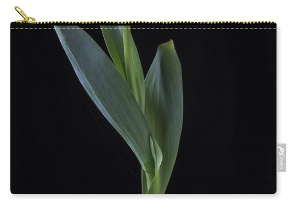 Dutch Tulip In Striped Vase Carry-all Pouch
