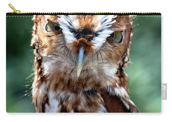 Eastern Screech-owl Carry-all Pouch
