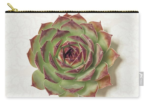 Echeveria Succulent Carry-all Pouch