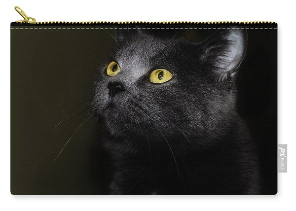 Eery Carry-all Pouch