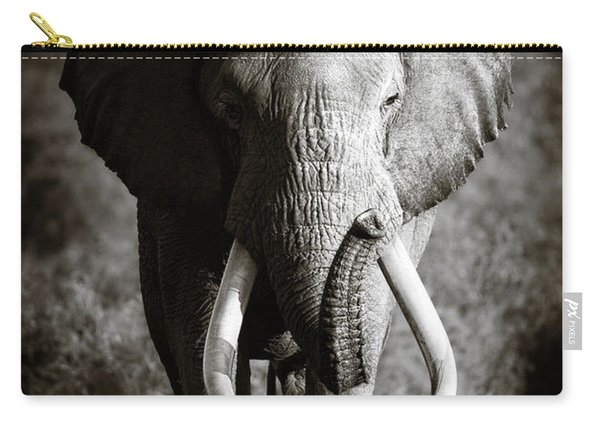 Elephant Bull Carry-all Pouch