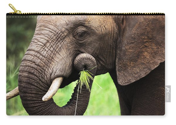 Elephant Eating Close-up Carry-all Pouch