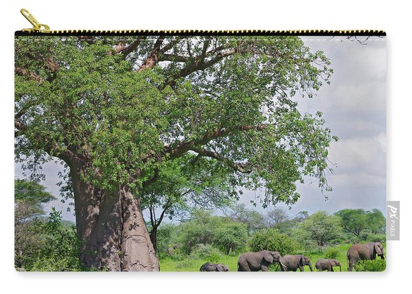 Elephants Walking Past Large Baobob Carry-all Pouch