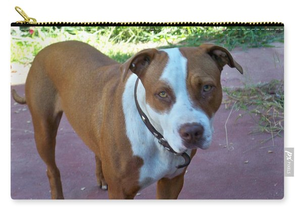 Emma The Pitbull Dog Carry-all Pouch