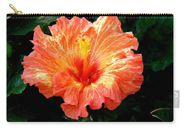 Enticement Carry-all Pouch