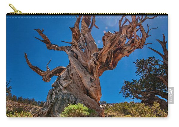 Eternity - Dramatic View Of The Ancient Bristlecone Pine Tree With Sun Burst. Carry-all Pouch