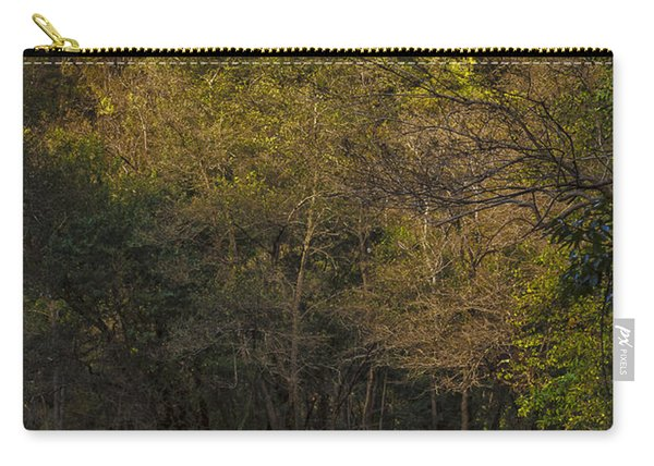 Eume River Galicia Spain Carry-all Pouch