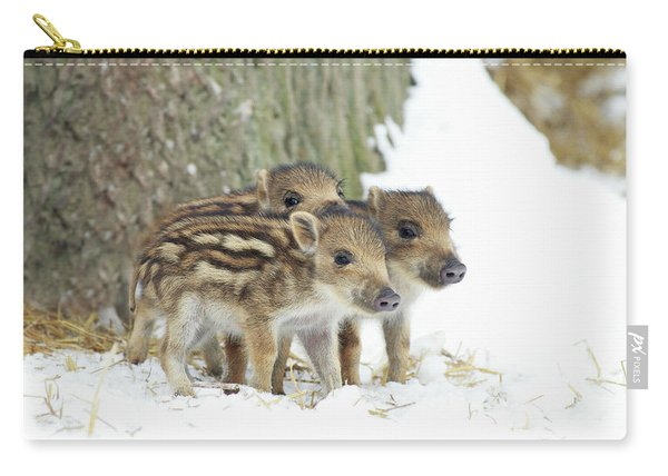 European Wild Piglets Carry-all Pouch