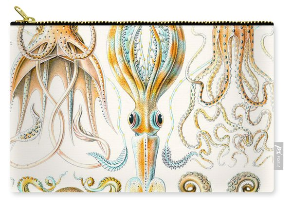 Examples Of Various Cephalopods Carry-all Pouch