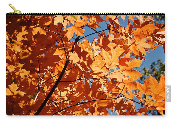 Fall Colors 2 Carry-all Pouch