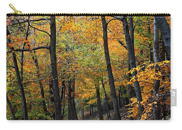Fall Foliage Colors 03 Carry-all Pouch