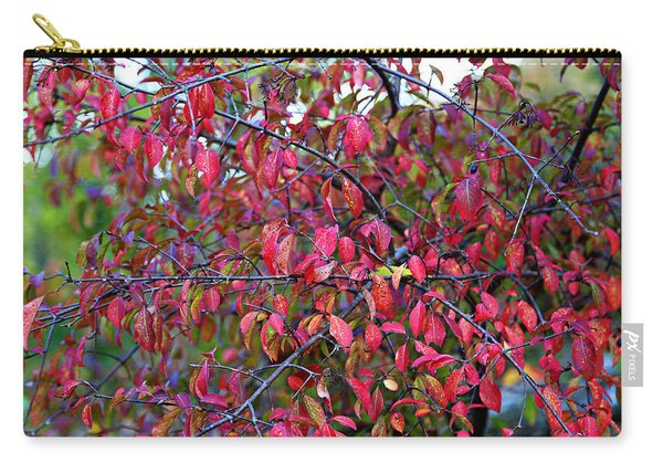Fall Foliage Colors 05 Carry-all Pouch