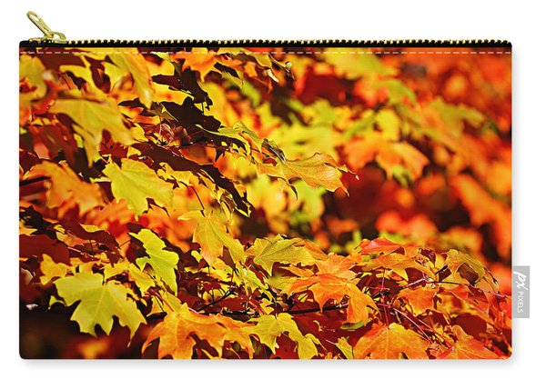 Fall Foliage Colors 13 Carry-all Pouch