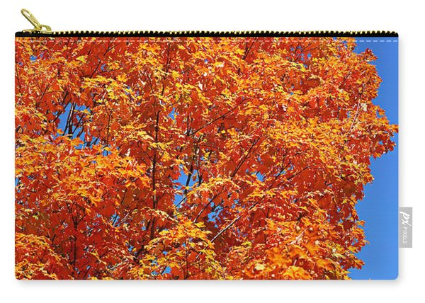 Fall Foliage Colors 18 Carry-all Pouch