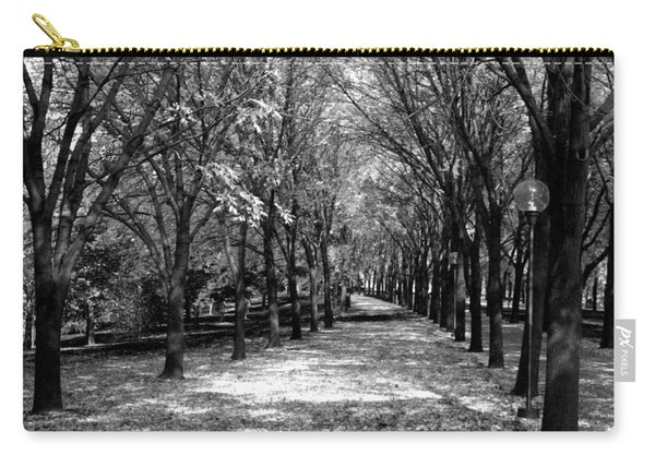 Fall Tree Promenade Landscape Carry-all Pouch