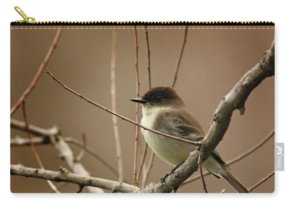 Fantastic Phoebe Carry-all Pouch