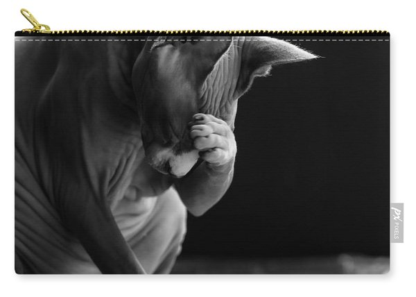 Feeling Your Pain Carry-all Pouch