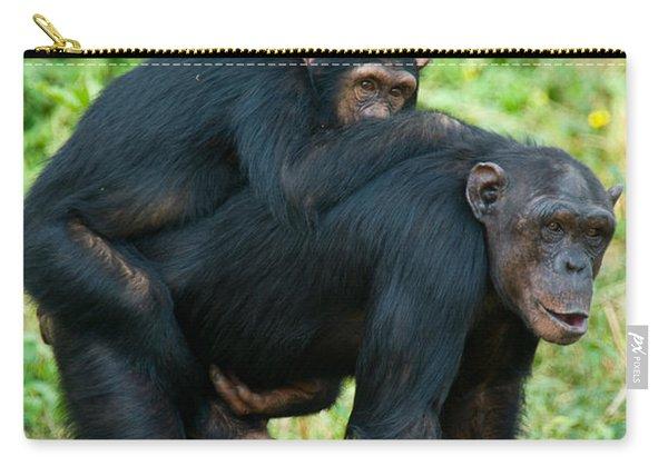 Female Chimpanzee Pan Troglodytes Carry-all Pouch