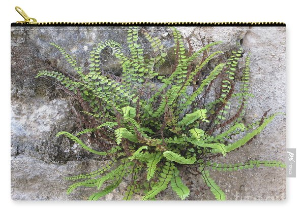 Fern Tendrils  Carry-all Pouch