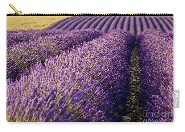 Carry-all Pouch featuring the photograph Fields Of Lavender by Brian Jannsen