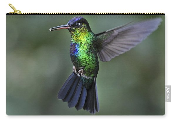 Fiery-throated Hummingbird..  Carry-all Pouch