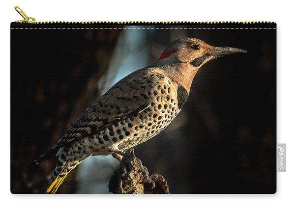 Flicker In Light Carry-all Pouch