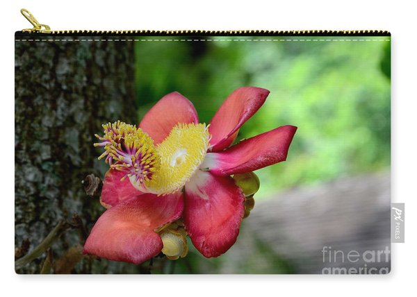 Flower Of Cannonball Tree Singapore Carry-all Pouch