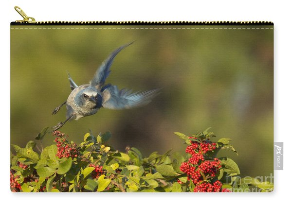 Flying Florida Scrub Jay Photo Carry-all Pouch