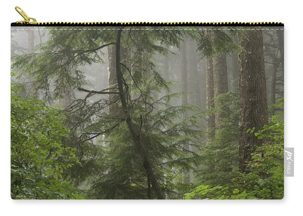 Foggy Woods Carry-all Pouch