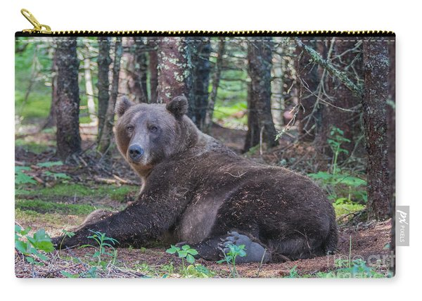 Forest Bear Carry-all Pouch
