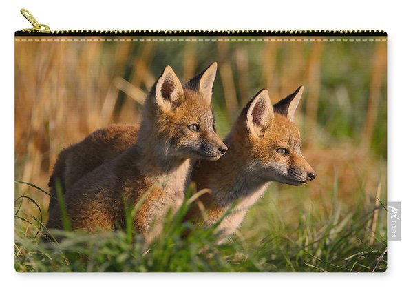 Fox Cubs At Sunrise Carry-all Pouch