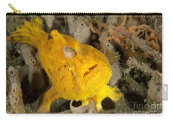 Frogfish With Large Lure, Open Mouth Carry-all Pouch