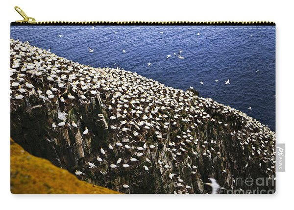 Gannets At Cape St. Mary's Ecological Bird Sanctuary Carry-all Pouch