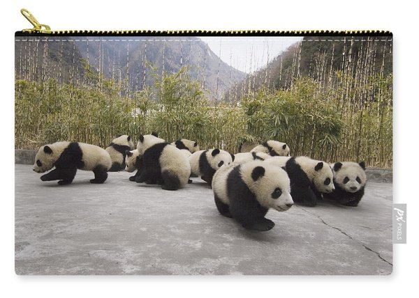 Giant Panda Cubs Wolong China Carry-all Pouch