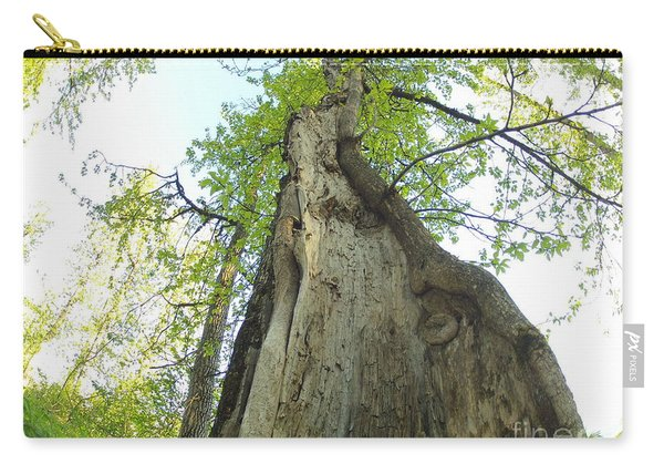 Giants Carry-all Pouch